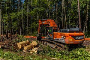 Site Development in Chapel Hill