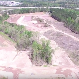 Forestry and land clearing in Holly Springs