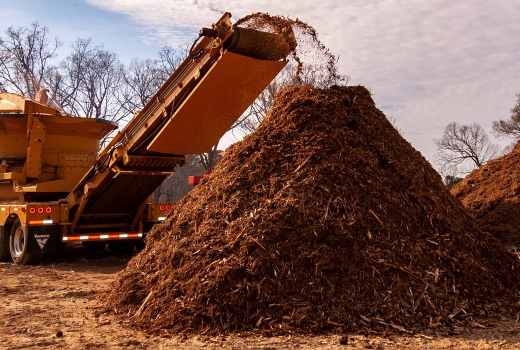 tree-removal-mulching-chapel-hill